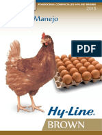 Hi Line Brown Manual de produccio de gallinas ponedoras