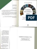 Padroes-de-Energia-Vital.pdf
