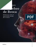 29545 El Cerebro de Broca