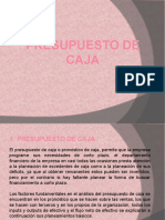 5.- Presupuesto de Caja