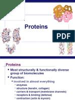 Bio Tek 2 Protein