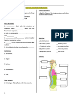 Worksheet - Human Anatomy - Nervous System