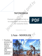 tafonomija