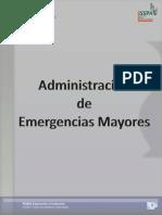 Manual SAEM 2010