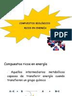 Compuestos Ricos en Energía Bioquímica I