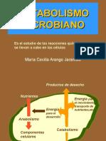 metabolismo1-2[1].ppt