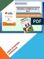 Sistema Curricular y DCN