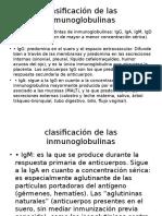 Clasificación de Las Inmunoglobulinas
