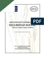 031710 Apunte Catedra Seguridad Social 2009