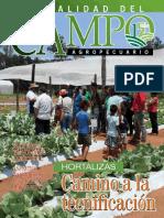 CAMPO - AÑO 15 - NUMERO 175 - ENERO 2016 - PARAGUAY - PORTALGUARANI