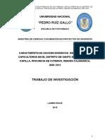 Tesis Maestria.doc