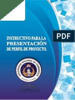 Instruc Presen Perfil Proyec