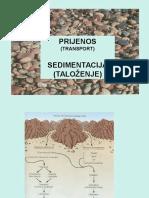 Sedimentacija