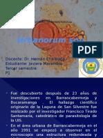 6urbanosorum-140130110432-phpapp02