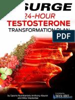 24-Hour Testosterone Transformation Fix