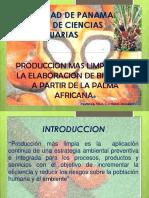 Produccionmaslimpia Palmaafricana 101006130331 Phpapp02