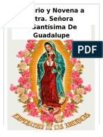 Novena Y Rosario a Nuestra Señora de Guadalupe_un Dia
