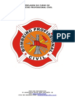Bombeiro Profissional Civil