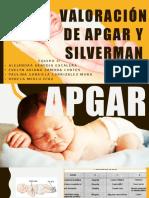 Valoracion de Apgar y Silverman (1)