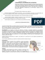 Los Receptores Sensoriales y Los Órganos de Los Sentidos