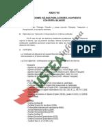 2016 ANEXO VIII Requisitos Bilingues