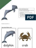 Sea Animals Flashcards