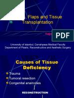 Grafts-Flaps and Tissue Transplantation