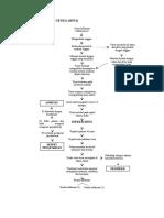 Pathway Avian Influenza