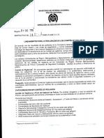 Ins. 009 Del 21012013 Lineamientos Para La Realización de Los Comites de Vigilancia