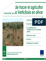 Que Hace El Agricultor Frente Verticilosis Olivar Prot