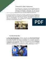 Oficina Municipal de Protección A La Niñez Y Adolescencia.docx