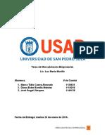 Informe Mercadotecnia Empresarial Listo