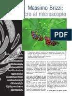 Macrofotografia - Dalla dalla macro al microscopio Macro Al Microscopio - Massimo Brizzi