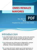 Sindromes Renales Mayores 13042015