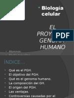proyectogenomahumanocmc-110515124127-phpapp01.pptx