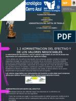 1.2 ADMINISTRACION DEL EFECTIVO Y DE LOS VALORES NEGOCIABLES.pptx