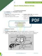 Desarrollo Fisiologico Fetal
