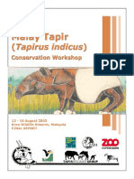 Malay Tapir Workshop Report