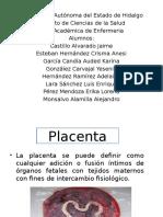 anomalias placentarias
