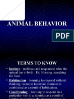 Ecology( Animal Behavior)