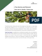 Value Tree Service