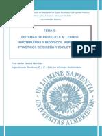 Tema 5_Sistemas de Biopelicula