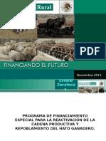 Repoblacion de Hato Ganadero Financiera Rural