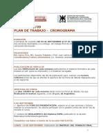 Cronograma y Plan de Trabajo Del Curso Gpel 09-09-092