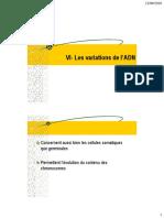UE1 Biologie Moleculaire Variation de l ADN 2010-2011