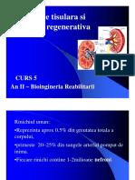 Medicina Regenerativa5 [Compagfhgfhtibility Mode]