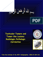 Tumors and Tumorlike Lesions of the Testis