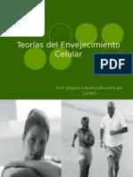 Seminariodepatologia1 090910204314 Phpapp01 (1)