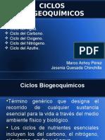 Presentación Ciclos.ppt