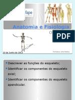 5 - Osteologia